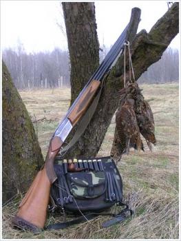 Какой ствол выбрать для охоты!?