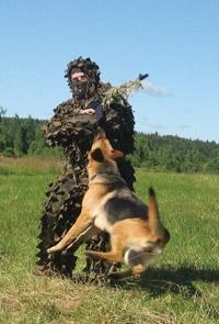 Оружие антитеррора: немецкая овчарка!