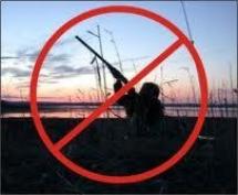 Азбука начинающего охотника: часть 2 (ограничения охоты)
