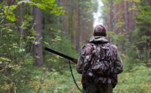 О разграничении незаконной охоты (статья 258 УК РФ) и нарушений правил охоты (части 1 - 1.3 статьи 8.37 КоАП РФ)